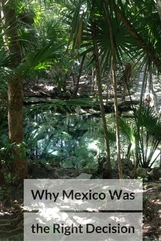 Why Mexico Was the Right Decision - Life in Transience