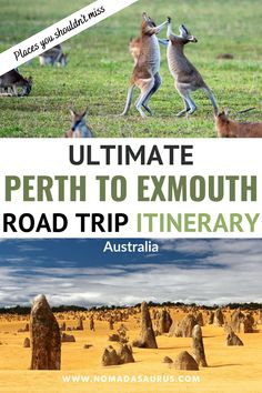 Having done this drive countless times, I'm thrilled to put together my epic guide for the perfect Perth to Exmouth road trip itinerary . perth to exmouth itinerary, road trip western australia, western australia road trip, Visit Australia, Australia Travel, Western Australia, Travel Advice, Travel Guides, Travel Tips, Yahoo Travel, Australian Photography, Backpacking Tips