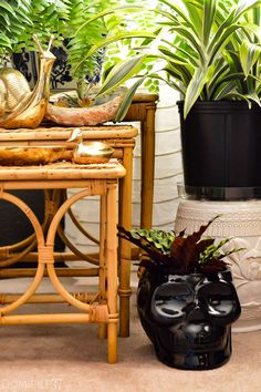 How to style plants | indoor plants | Bohemian decor | skeleton planter | rattan decor and plants
