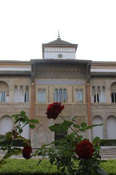 Buenos días! La entrada del Alcázar #Sevilla