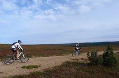 Saariselkä MTB 2013, XCM (13) | Saariselkä.  Mountain Biking Event in Saariselkä, Lapland Finland. www.saariselkamtb.fi #mtb #saariselkamtb #mountainbiking #maastopyoraily #maastopyöräily #saariselkä #saariselka #saariselankeskusvaraamo #saariselkabooking #astueramaahan #stepintothewilderness #lapland