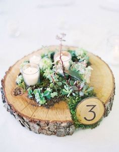 blog centerpiece rustic plant 12 Wedding Centerpiece Ideas from Pinterest