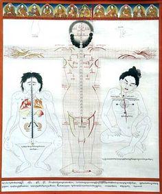 médecine tibétaine