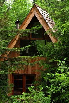 Cool forest house clad in wood This Amazing Forest House Was Built For Just $11,000 With Locally Found Materials!