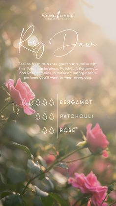 Yl Essential Oils, Patchouli Essential Oil, Rose Essential Oil, Essential Oil Perfume, Essential Oil Diffuser Blends, Young Living Essential Oils, Patchouli Perfume, Perfume Recipes, Diffuser Recipes