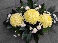 chrysanten - #chrysanten - #chrysanten - #chrysanten Arte Floral, Deco Floral, Beautiful Flower Arrangements, Floral Arrangements, Beautiful Flowers, Church Flowers, Funeral Flowers, Longwood Gardens, Chrysanthemum