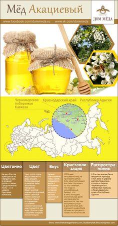 Инфографика: акациевый мёд