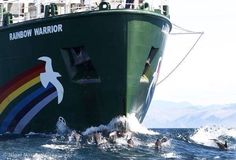 Rainbow Warrior - South Africa May 2015