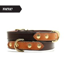 Best in Park - Voyage Collar (Sepia/Chestnut)