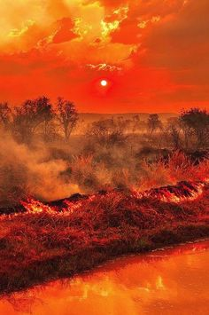 Terrific Sunset Fires,, Outstanding View!! | Nature Board
