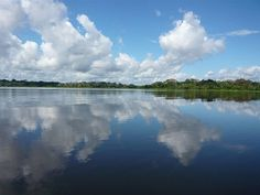 Amazonas river.