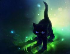 Black cat background.
