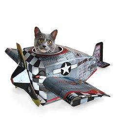 This Plane Cat Playhouse is perfect! If I had a cat of course! Zulily.com
