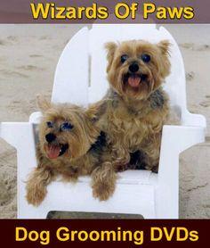 Merrylegs Dog Grooming