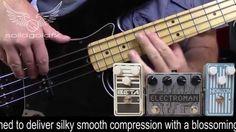 SolidGoldFX Horizon Compressor Bass Demo feat Ben Wright