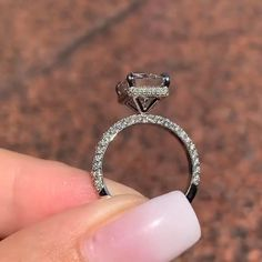 Big Engagement Rings, Halo Diamond Engagement Ring, Engagement Ring Settings, Tiffany Engagement, Love Ring, Dream Ring, Forever Diamonds Ny, Fashion Rings, Wedding Rings