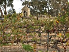 Australia's Clare Valley Wine Region