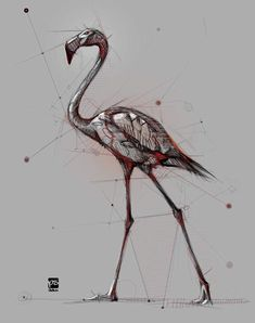 Animal Sketches, Animal Drawings, Drawing Sketches, Fish Drawings, Art Drawings, Amazing Drawings, Sketch Painting, Sketch Design, Drawing Techniques