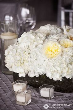 White hydrangea with a pop of yellow!... love the texture