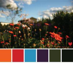 color-palette-sky-flowers - great color scheme for family pictures Family Color Schemes, Colour Schemes, Color Combos, Red Colour Palette, Color Pop, Colour Palettes, Red Color, Family Photo Colors, Cat Colors