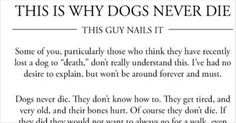 Man Explains Why Dogs Truly Are Man's Best Friend And He Absolutely Nails It.