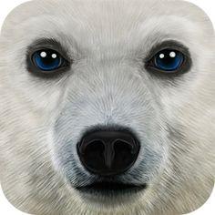 Download Ultimate Arctic Simulator android game for Free  - http://android4fun.net/ultimate-arctic-simulator/