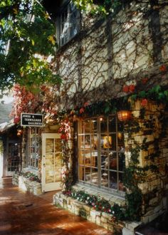 Carmel, California--Loved all the art galleries.  Reminded me of Annapolis, Maryland, except the water was blue!  Google Image Result for http://www.jones-terwilliger-galleries.com/background_color/westout.jpg