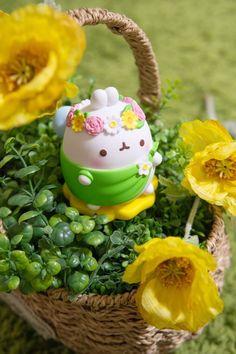 Molang, Cute Poster, Cute Desserts, Cute Clay, Kawaii Wallpaper, Cute Cartoon Wallpapers, Polymer Clay Crafts, Kawaii Cute, Clay Art