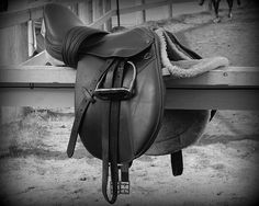 #Saddle Up by Karen Cook