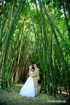 Haha! We should have kept our bamboo jungle!!