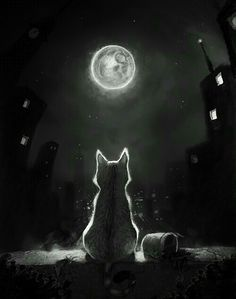 Tonight and Friday, let's do MOON ART. Warrior Cats, I Love Cats, Crazy Cats, Cute Cats, Moon Art, Moon Moon, Cats And Kittens, Cats Meowing, Fantasy Art