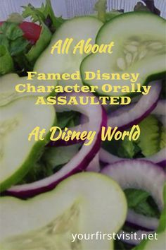 Disney World Food: Where to find Mickey-Shaped treats and how some of the more fascinating are made! | yourfirstvisit.net | #DisneyWorldFood Disney World Deals, Disney World Facts, Disney World Characters, Disney World Food, Disney World Restaurants, Disney World Planning, Walt Disney World, Mickey Mouse Pancakes, Icecream Bar
