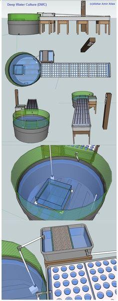 Conceptual Rendering of Aquaponics - Abhar Amir Alias Aquaponics Greenhouse, Aquaponics Fish, Fish Farming, Hydroponics System, Hydroponic Gardening, Organic Gardening, Permaculture, Paludarium, Urban Farming