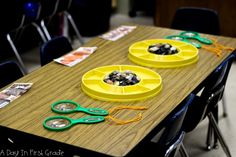 How to set up an inquiry-based activity in your classroom.
