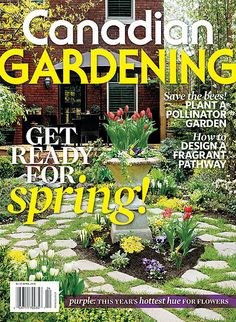 Get ready for spring! How to design a fragrant pathway; purple, this yea'rs hottest hue for flowers; dealing with drainage; an enchanted woodland; our favourite woody climbers and more! Save The Bees, Climbers, Pathways, Woody, Garden Plants, Enchanted, Hue, Woodland, Gardening