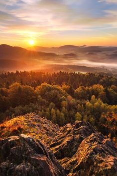 Hiking in Bohemian Switzerland: Eleven enticing reasons to take a day trip from Prague and explore the stunning Bohemian Switzerland national park! Click here for more info!