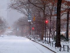 Pictures Of Snow Storm In Michigan 2014 | Photography