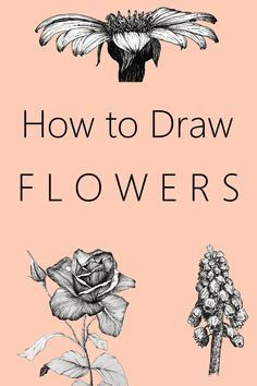 Easy step-by-step guide for drawing and sketching your favorite flower.Tutorial with MANY examples to create beautiful a Flower Drawing Tutorials, Flower Sketches, Art Drawings Sketches, Easy Drawings, Art Tutorials, Flower Tutorial, Flower Drawings, Pencil Drawings, Painting & Drawing