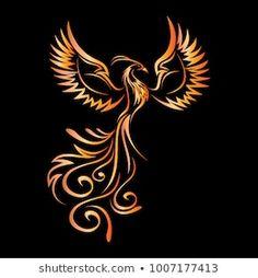 Phoenix Tattoo Feminine, Small Phoenix Tattoos, Phoenix Tattoo Design, Tribal Phoenix Tattoo, Small Tribal Tattoos, Phoenix Rising, Phoenix Wings, Phoenix Artwork, Phoenix Images