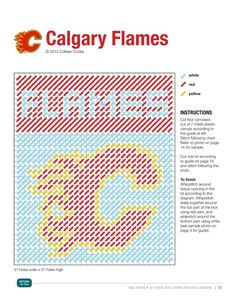 NHL CALGARY FLAMES (1/3) Plastic Canvas Tissue Boxes, Plastic Canvas Crafts, Plastic Canvas Patterns, Loom Patterns, Crochet Patterns, Football Canvas, Red Wind, Tissue Box Covers, Tissue Holders