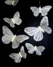 Butterfly Wedding Decorations #floraltrims #butterflies