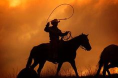 Ah that orange sky reminds me of the dust storms in West Texas. Sure don't miss gathering cattle in that dusty wind!
