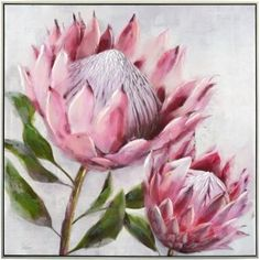 Protea Art, Protea Flower, Flower Bird, Framed Canvas Prints, Artwork Prints, Canvas Art, Canvas Prints Australia, Loom Flowers, Blue Flower Wallpaper
