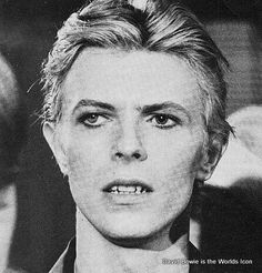 This might be my favorite picture of David bowie