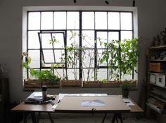INDOOR GARDEN :: Loft Window Garden  #loft #indoorgarden #windowbox