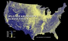 Some crops most dependent on pollinators—including pumpkins, watermelons, pears, peaches, plums, apples and blueberries—appeared to have the strongest pollination mismatch, growing in areas with dropping wild bee supply and increasing in pollination demand.