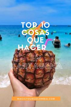 Discover the top 10 thing to do in Cartagena with this ultimate guide and let yourself be surprised by a city full of history and Colombian traditions. Trip To Colombia, Colombia Travel, Backpacking South America, South America Travel, Croatia Travel, Thailand Travel, Bangkok Thailand, Hawaii Travel, Italy Travel