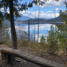 New discovery yesterday in Canoe! The glorious Park Hill trail system with views that took our breath away. Shuswap you continue to amaze… Breath Away, Tree Tops, Lake Life, Canoe, British Columbia, Wilderness, Lush, Discovery, Trail
