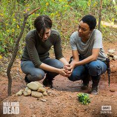 The Walking Dead    :'-(