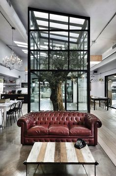 Indoor Tree   Modern Architecture   Unique Interior   Red Leathr   Chesterfield Sofa   Iconic Furniture   Tufted Couch